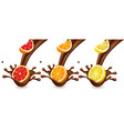 fruits cutrus in chocolate splash vector image vector image