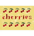 Hand-drawn Cherries vector image vector image