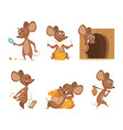 mouse character funny cartoon mice vector image