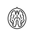 walnut outline icon walnut core symbol healthy vector image