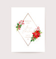 winter poinsettia flower card christmas vector image vector image