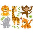 set of jungle animals vector image