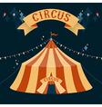 circus chapiteau vector image