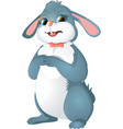 easter bunny with bow vector image vector image