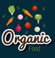 group of vegetables vegetarian food vector image