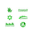 set of grass logo design template vector image