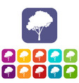 tree with a rounded crown icons set vector image