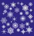 collection decorative snowflakes set winter vector image vector image