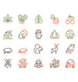 color linear icon set forest objects vector image vector image