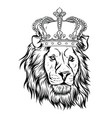 lion king head a vector image vector image