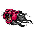 mascot image a tiger head with whiskers vector image vector image