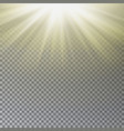 sun light sun rays effect vector image vector image