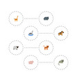 flat icons waterbird camelopard kitty and other vector image vector image