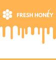 fresh honey drop vector image vector image