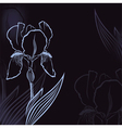 iris background vector image vector image