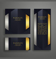 luxury invitation card design set vector image vector image
