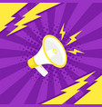 megaphone icon in pop art style vector image vector image