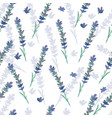 seamless pattern watercolor lavender flowers vector image