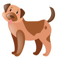 brown dog with happy face vector image