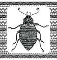Coloring page of Balck Bug zentangle vector image vector image