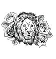 embroidery colorful pattern with lion and crown vector image vector image