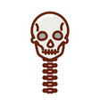 human body skull vertebrae anatomy organ health vector image vector image