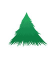 pine tree nature icon on white background vector image