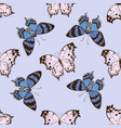 seamless pattern with hand drawn colored alcides vector image vector image