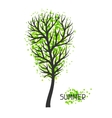 Background with summer tree of vector image