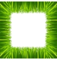 border frame green grass isolated on white vector image vector image