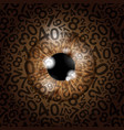 brown eyeball number background vector image