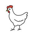 chicken color icon vector image