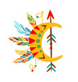decorative object with arrow feathers and vector image vector image