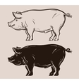 pig logo farm pork or piggy icon vector image vector image
