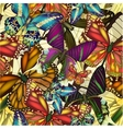 Seamless pattern colorful butterflies EPS10 vector image