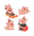 set of isolated pigs cartoon style vector image vector image