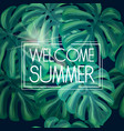 welcome summer tropical background vector image vector image