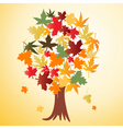 autumn 03 vector image vector image