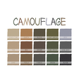 Camouflage Color Tone vector image