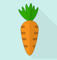 carrot icon vector image