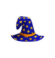 cartoon astrologer or witch hat icon cap vector image vector image