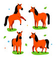 cute horse - flat design style set characters vector image