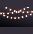 fairy lights on dark background vector image