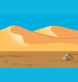 nature scene with sand in desert vector image vector image
