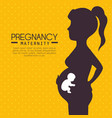 pregnancy and maternity infograhic vector image vector image