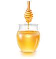 realistic detailed 3d transparent glass honey jar vector image