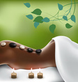 Spa Stone Massage vector image vector image