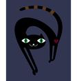black cat in night vector image vector image