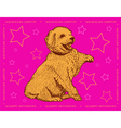 Dog Golden Retriever on a pink ornamental backgrou vector image vector image
