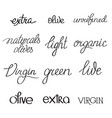 olive oil typographical words set vector image vector image